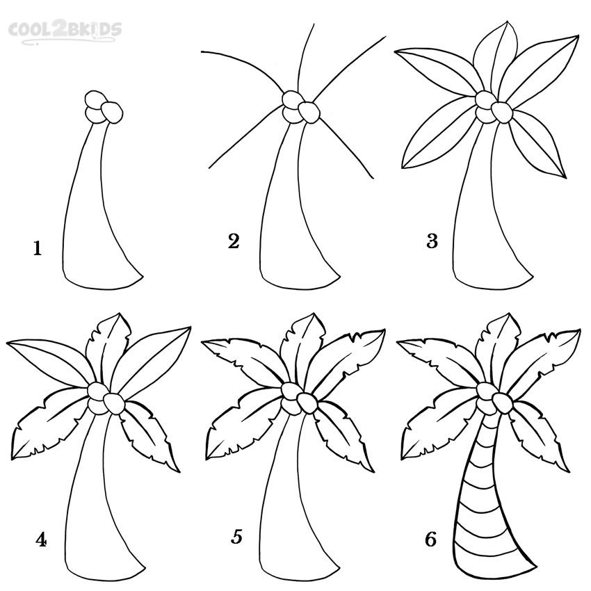 how to draw a palm tree step by step pictures cool2bkids