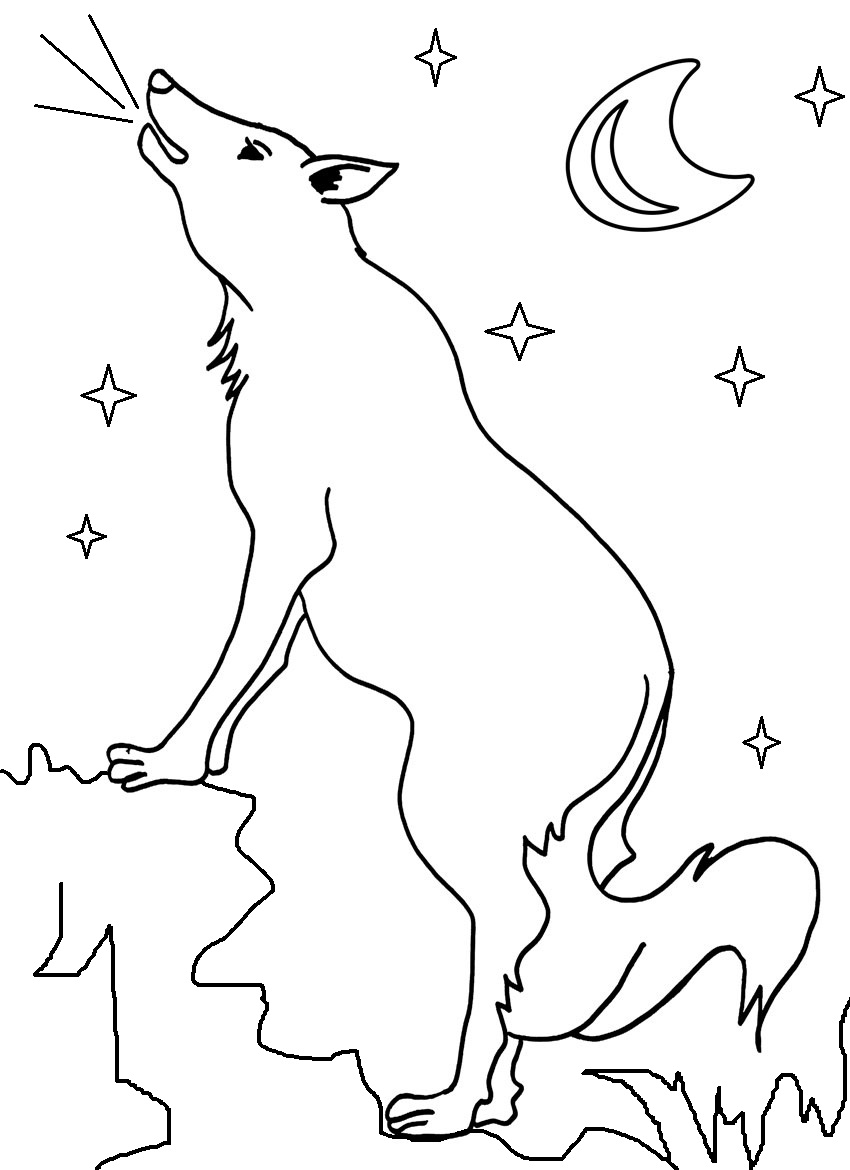 similiar coyote coloring pages keywords