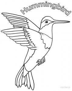 Printable Hummingbird Coloring