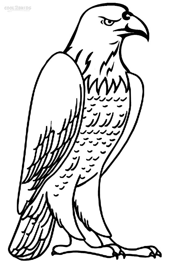 eagle coloring pages printable bald eagle coloring pages for kids cool2bkids