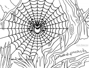 Printable Spider Web Coloring Pages For Kids Cool2bkids