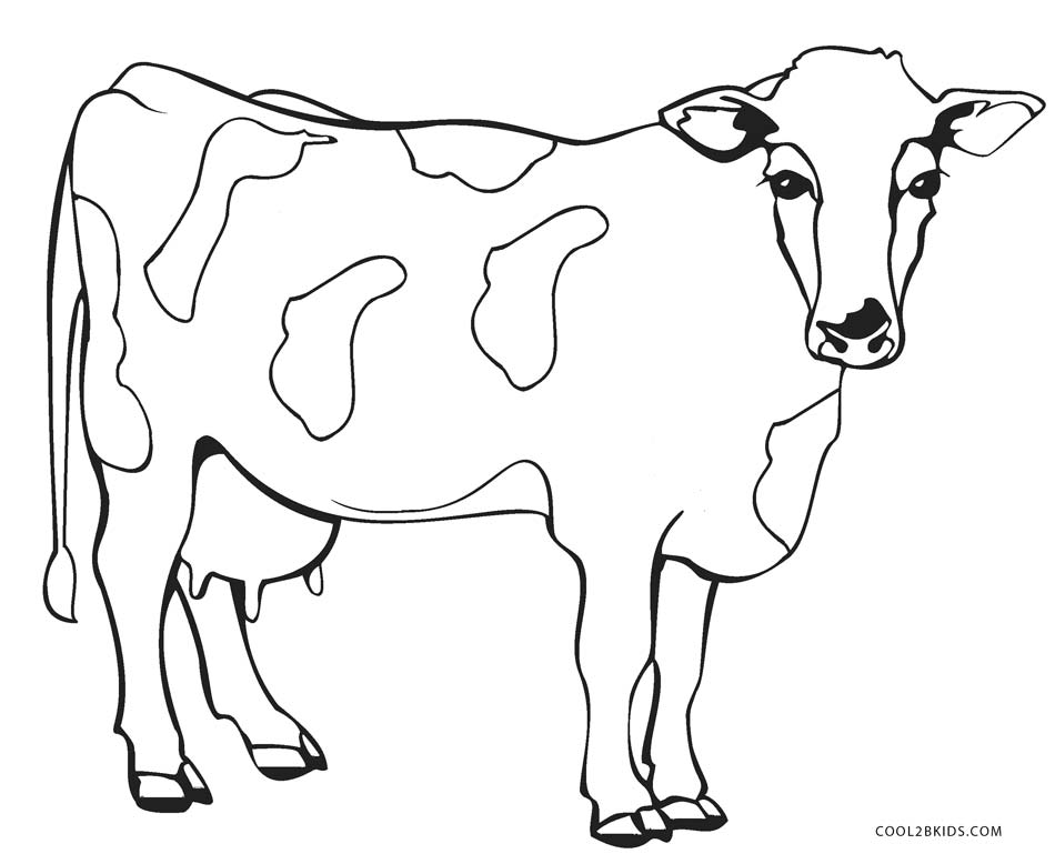 Free Printable Cow Coloring Pages For Kids Cool2bKids