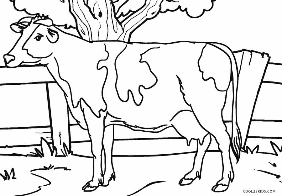 painting cow coloring pages - photo#37