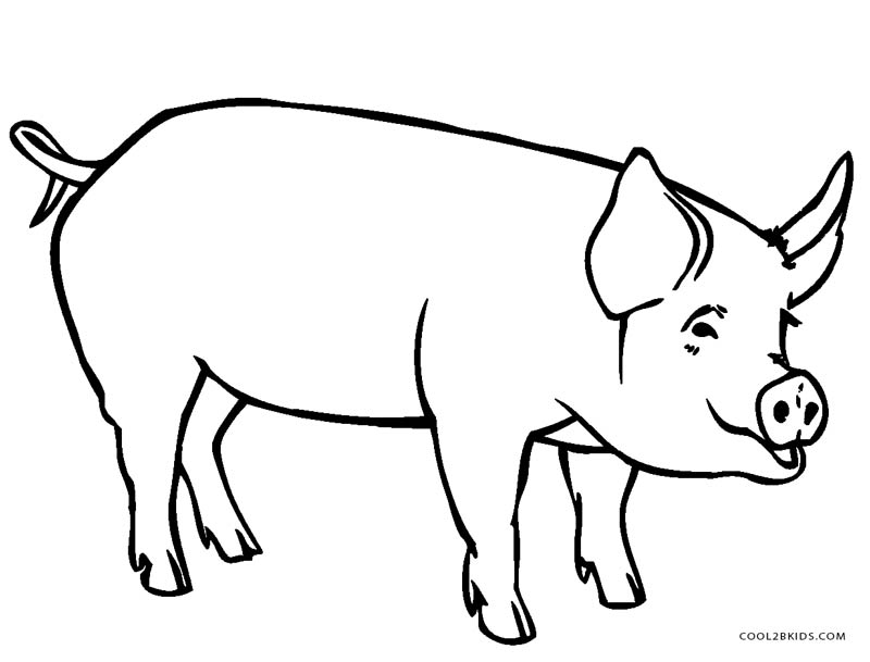 pig coloring book pages - photo#19