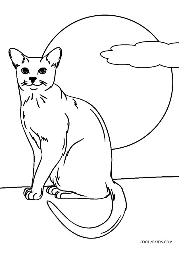 cat pages for coloring - photo#16