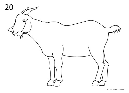 how to draw a goat step by step pictures cool2bkids