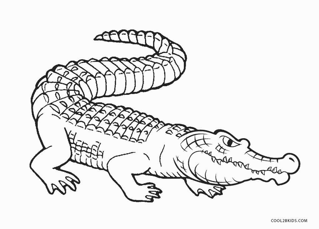 россии крокодил рисунок для раскрашивания штукатурка