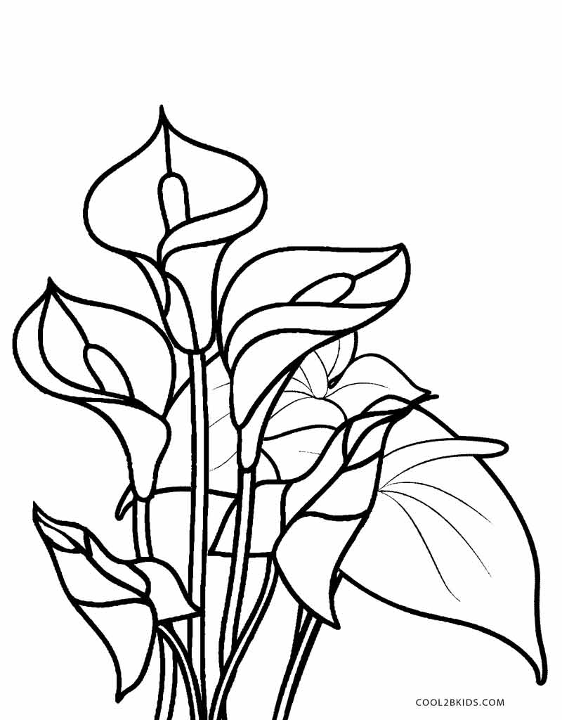 coloring pages of plants - photo#10